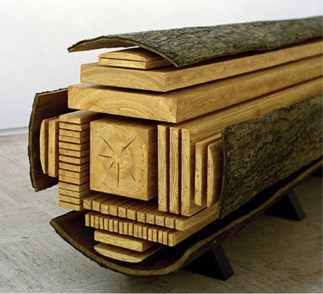 Tree cut into lumber